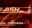 The Flash Temporada 1 HD 720p Latino