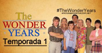 Los años maravillosos Temporada 1 (The Wonder Years) HD Latino